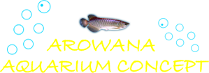 Arowan Aquarium Concept - Aquarium – Vente de poissons
